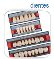 dientes material laboratorio dental